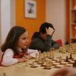 Schachakademie: Ferienkurse für Kinder